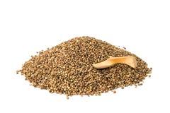 Семена пеньки с ложкой Стоковая Фотография RF