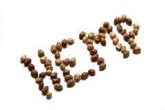 семена пеньки Стоковое Изображение RF