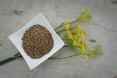 семена плиты цветка анисовки Стоковая Фотография RF