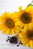 Семена подсолнуха на деревянной ложке Стоковые Фотографии RF