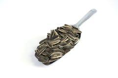 Семена подсолнуха в алюминиевой ложке на белой предпосылке Стоковые Фотографии RF