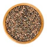 Семена редиски и зеленые чечевицы в деревянном шаре Стоковые Фото