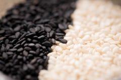 Семена сезама закрывают вверх по съемке макроса Стоковые Фото