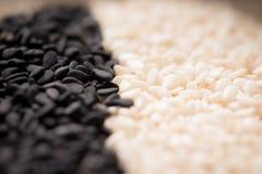 Семена сезама закрывают вверх по съемке макроса Стоковое Фото