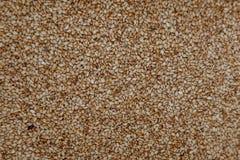 Семена сезама Toastes как предпосылка Стоковое Изображение