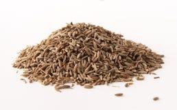 семена тимона все Стоковые Фотографии RF