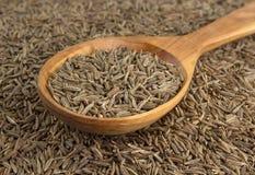Семена тимона в деревянной ложке стоковые изображения