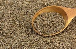 Семена тимона в деревянной ложке стоковое фото
