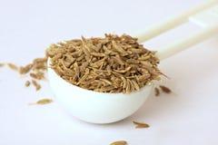 Семена тимона в ложке Стоковое Фото