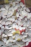 семена тыквы еды предпосылки близкие вверх Стоковое фото RF