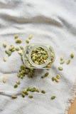 Семена тыквы на linen ткани Стоковое Изображение RF