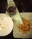 семена тыквы питья Стоковое Изображение RF
