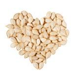 семена тыквы сердца Стоковые Фотографии RF