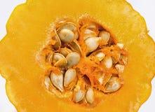 семена тыквы Стоковое Фото