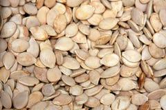 семена тыквы Стоковые Изображения RF
