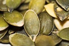 семена тыквы Стоковая Фотография