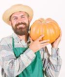 Семена удобрение земледелия и концепция земледелия сбора Рисберма носки фермера человека бородатая деревенская представляя тыкву стоковое фото