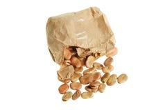 семена фасоли обширные Стоковые Изображения RF