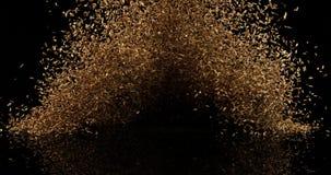 Семена фенхеля, vulgare фенхеля взрывая против черной предпосылки, замедленного движения акции видеоматериалы