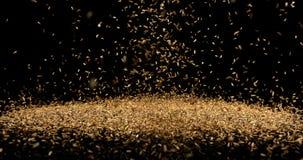 Семена фенхеля, vulgare фенхеля падая против черной предпосылки, замедленного движения акции видеоматериалы