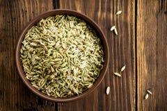 Семена фенхеля стоковое изображение