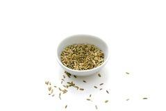 Семена фенхеля Стоковая Фотография