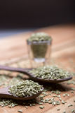 Семена фенхеля Стоковое фото RF