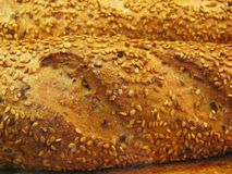 семена хлеба Стоковая Фотография