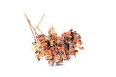 Семена цветка Стоковое Изображение RF