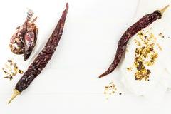 Семена чилей и перца стручка сухие стоковое изображение rf