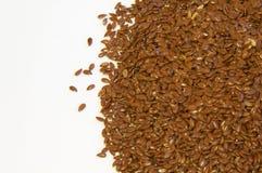 семена Стоковое фото RF
