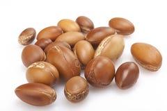 Семена argan на белизне, конце вверх на белой предпосылке Стоковые Фотографии RF
