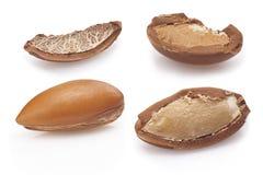Семена argan на белизне, конце вверх на белой предпосылке Стоковые Изображения