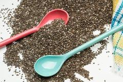 Семена Chia в опарнике Стоковые Изображения RF