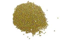 семена mung фасоли Стоковая Фотография