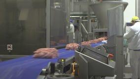 Семенить системы мяса видеоматериал