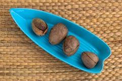 4 семени авокадоа, который служат в голубой плите стоковое изображение rf