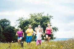 Семья бежать на луге для спорта Стоковое фото RF