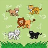 семья большого кота Стоковые Изображения
