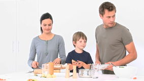 Семья варя totgether сток-видео