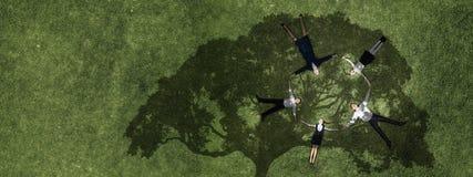 Семья в парке лета стоковое изображение
