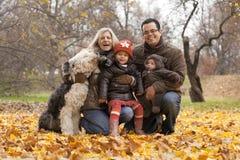 Семья в парке стоковое изображение rf