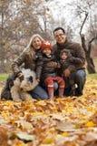 Семья в парке стоковые фотографии rf