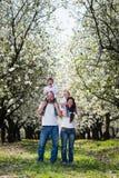 Семья в саде вишневого цвета Стоковое фото RF
