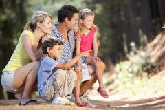 Семья гуляя в страну Стоковая Фотография