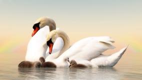 Семья лебедя - 3D представляют Стоковые Изображения