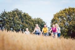 Семья ехать их велосипеды сняла над полем зерна Стоковое фото RF