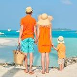 Семья из трех человек на пляже под пальмой стоковое фото