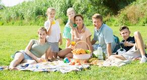 Семья имея пикник совместно Стоковая Фотография RF
