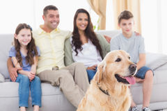 Семья и собака смотря ТВ совместно Стоковая Фотография RF